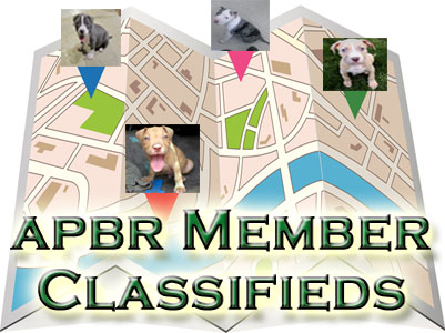 APBR member PitBull Classifieds
