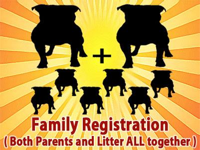 American PitBull Registry - PitBull Registration Made Easy